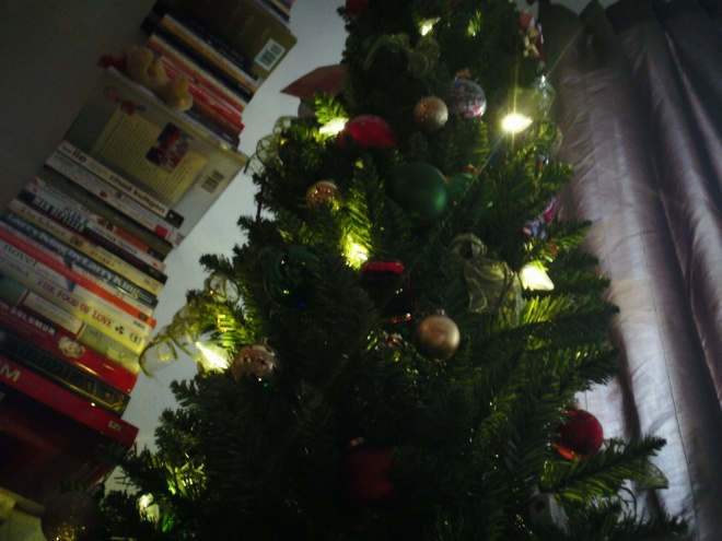 Tree is up!