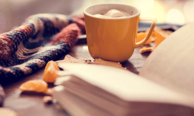 Books to cozy up with this fall.